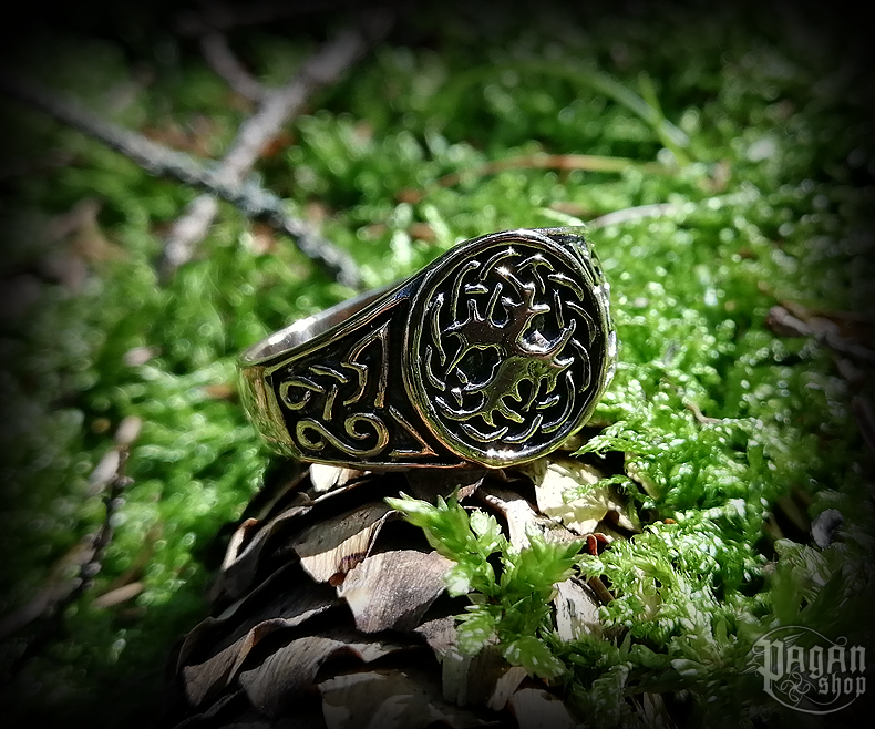 Ring Tree of life Yggdrasil - bronze