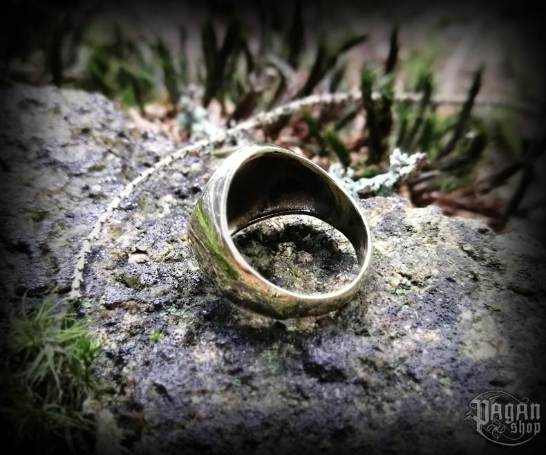 Ring Vegvisir Ragsøn - bronze