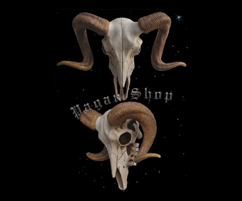 Relief Ram's skull