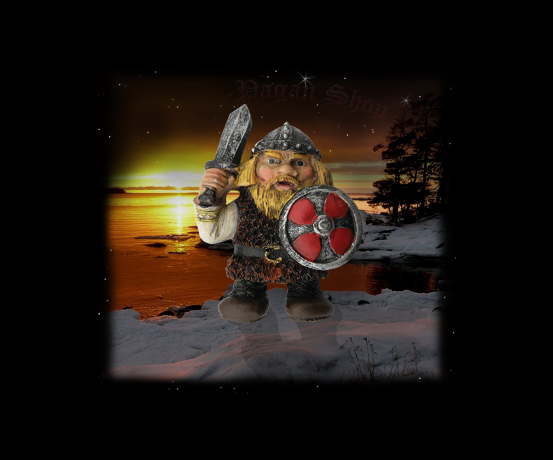 Fridge magnet Viking