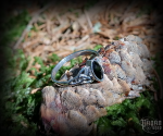Ring Rigani with black crystal - 925 sterling silver