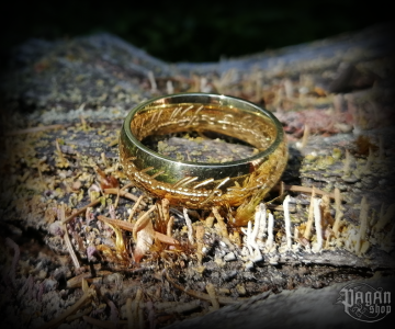 Ring Lord of the rings Frodo - 316L